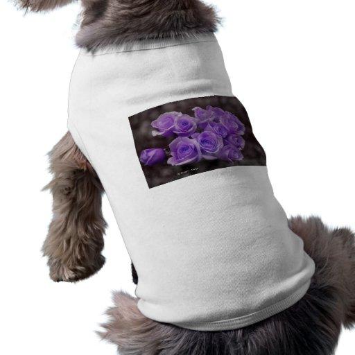 Manojo subió colorized púrpura camisetas de perro