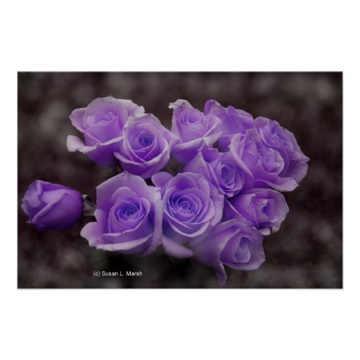 Manojo subió colorized púrpura impresiones