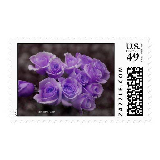 Manojo subió colorized púrpura sello