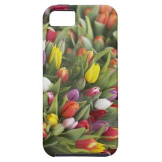 Manojos de tulipanes coloridos iPhone 5 Case-Mate fundas