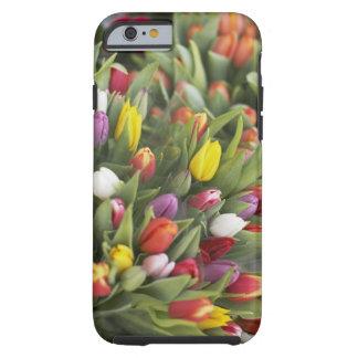 Manojos de tulipanes coloridos funda de iPhone 6 tough