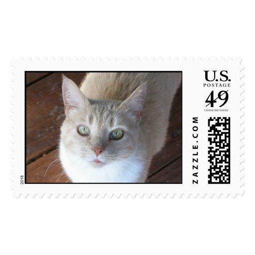 Manoplas Timbre Postal