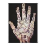 manos en una impresión en lona