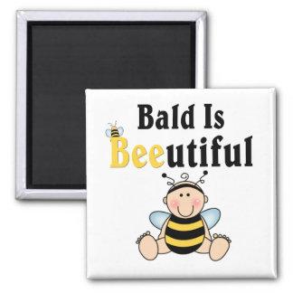 Manosee al bebé que la abeja calva es hermosa imán cuadrado