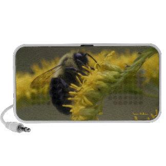 Manosee el altavoz del Doodle de la abeja