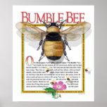 Manosee el poster de la abeja