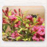 Manosee la abeja alfombrillas de ratones
