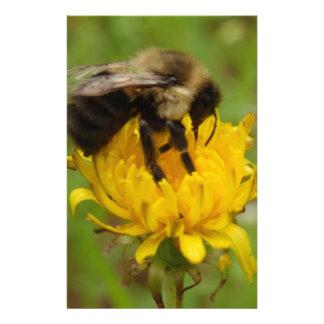 Manosee la abeja en el diente de león amarillo  papeleria