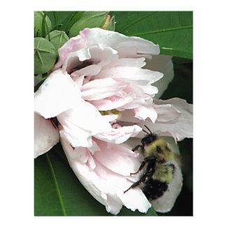 Manosee la abeja en el flor del Peony