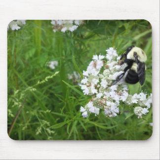 Manosee la abeja en las flores blancas alfombrilla de ratón