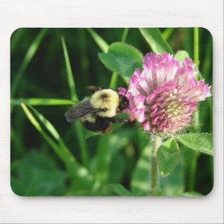 Manosee la abeja en trébol alfombrilla de raton