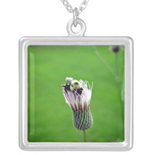 Manosee la abeja en una flor del cardo colgante cuadrado
