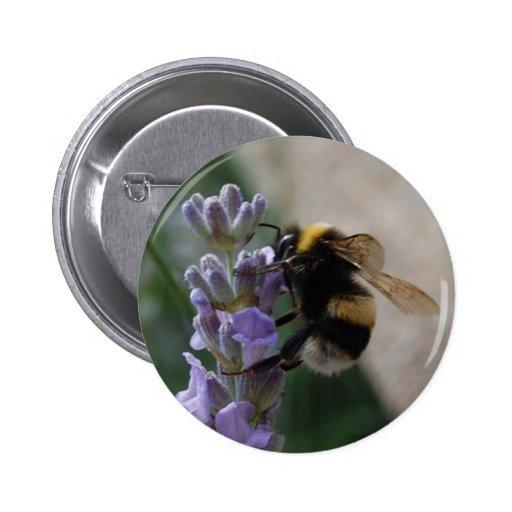 Manosee la abeja en Valender Pins