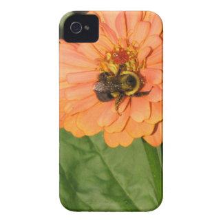 Manosee la abeja en Zinnia anaranjado iPhone 4 Case-Mate Fundas