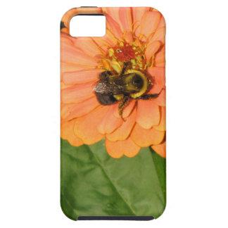 Manosee la abeja en Zinnia anaranjado iPhone 5 Carcasas
