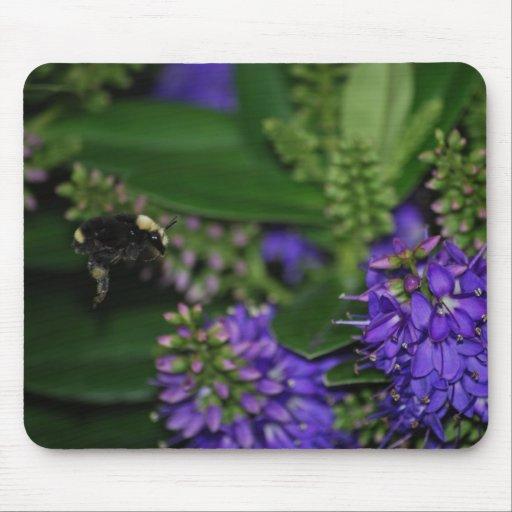 Manosee la abeja Mousepad