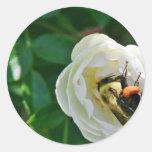 Manosee la abeja pegatina redonda