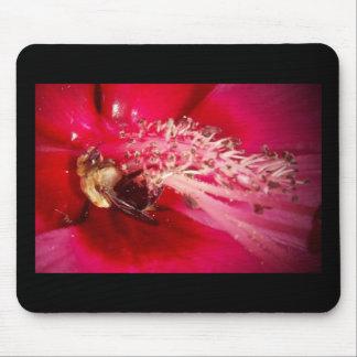 Manosee la abeja tapetes de ratón