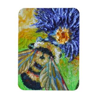 Manosee la abeja y el imán azul del aster