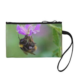 Manosee la foto de la abeja