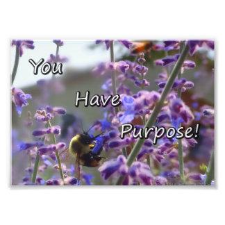 Manosee la foto de la abeja que usted tiene cojinete