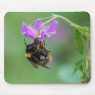 Manosee la foto de la abeja tapete de raton