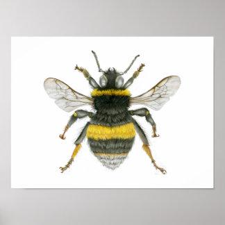 Manosee la impresión del poster de la abeja