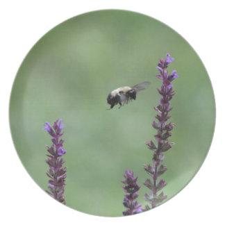 Manosee los accesorios de la abeja plato de comida