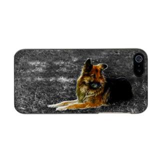 Man's Best Friend #3 Metallic iPhone SE/5/5s Case