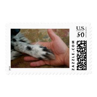 Man's Best Friend, Dog Lover's Stamp