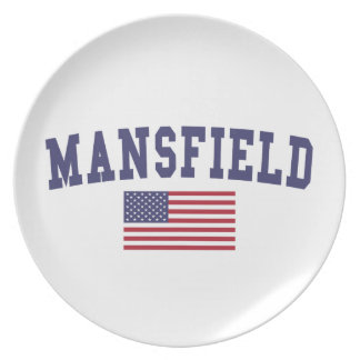 Mansfield OH US Flag Dinner Plate