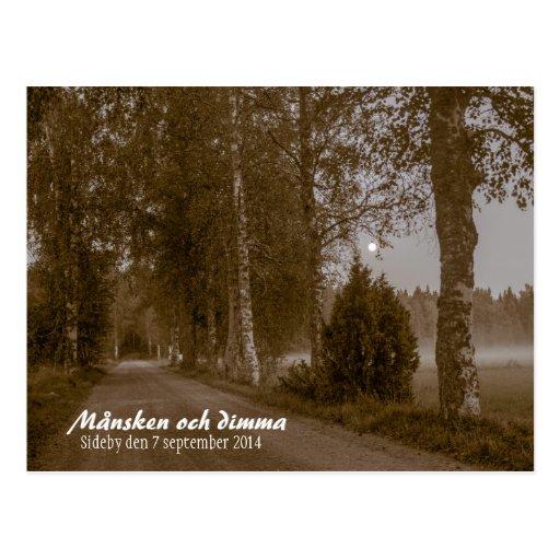 Månsken och dimma CC0545 Sideby Postcard