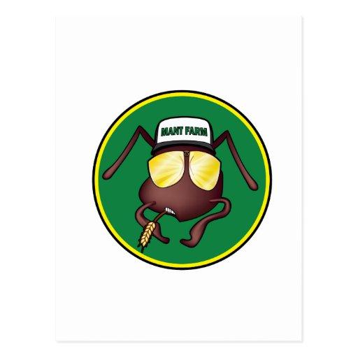 Mant Farm the Post Card