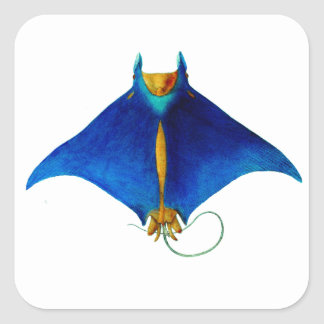 manta ray art square sticker