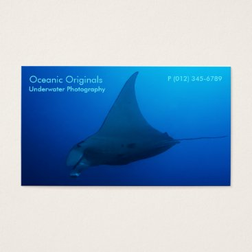 Professional Business Manta Ray in the Coral Sea Business Card