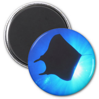Manta Ray Silhouette Magnet