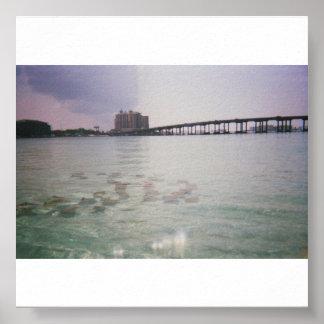 MANTA_RAYS_PASS_ON_CRAB_ISLAND_DESTIN_FLORID PRINT