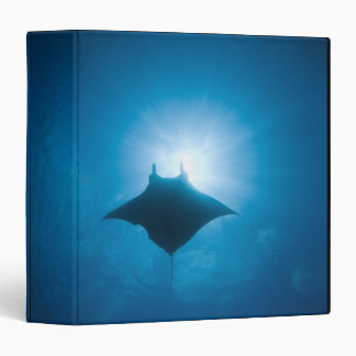 Manta swimming underwater binder