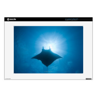 """Manta swimming underwater decal for 15"""" laptop"""
