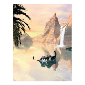Mantas Postcard