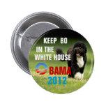 Mantenga a BO la Casa Blanca Pins