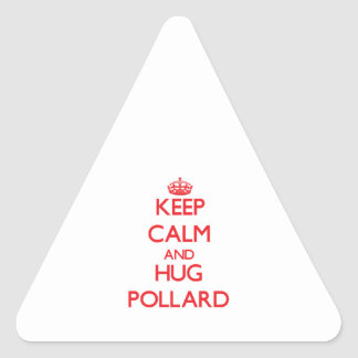 Mantenga árbol descopado tranquilo y del abrazo pegatina de triangulo