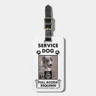 Mantenga el carnet con foto del perro etiqueta de equipaje