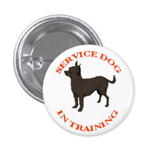 Mantenga el perro en botón del entrenamiento pin