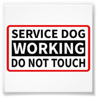 Mantenga el perro que trabaja por favor no tocan impresiones fotográficas