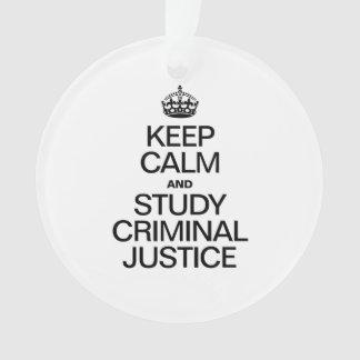 MANTENGA JUSTICIA PENAL TRANQUILA Y DEL ESTUDIO