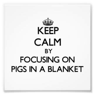 Mantenga la calma centrándose en cerdos una manta fotografías