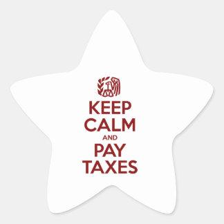 Mantenga los impuestos tranquilos y de la paga calcomanía forma de estrella personalizada