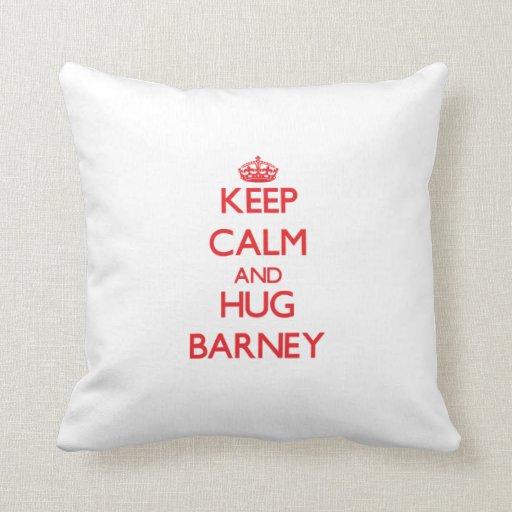 Mantenga tranquilo y ABRAZO Barney Almohada
