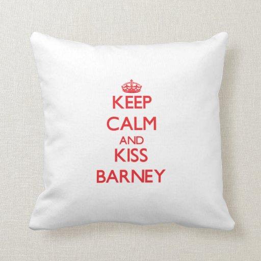 Mantenga tranquilo y beso Barney Almohadas